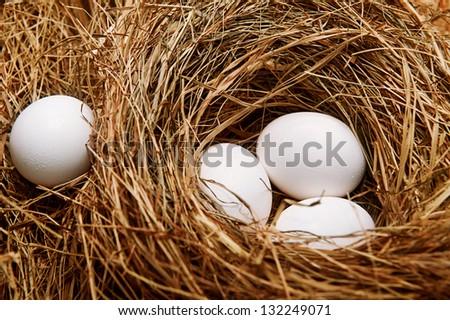 Three white eggs in the straw nest.