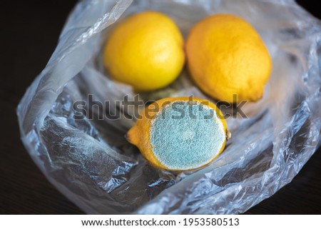 Three whole yellow bright lemons in a cellophane transparent plastic bag. One lemon with light turquoise textured mold, another two lemons are normal, ripe. Top view Stock photo ©