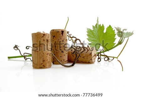 Three wine corks with grapevine leaves and tendrils on white