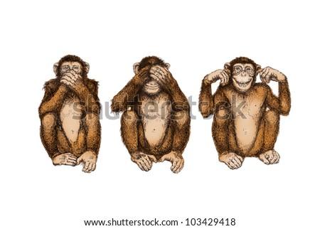 Three wise monkeys (see, hear, speak no evil)