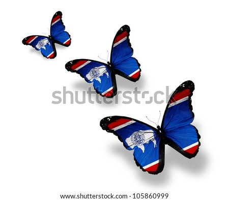 Three Wyoming flag butterflies, isolated on white