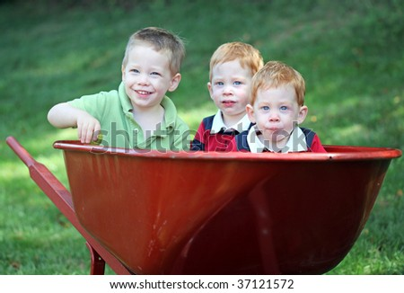 Three young brothers sitting in wheel barrow