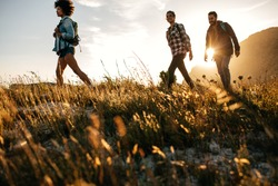 Three young friends on a country walk. Group of people hiking through countryside.