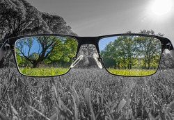 Through glasses frame. Colorful view of landscape in glasses and monochrome background. Different world perception. Optimism, hopefulness, mental health concept.