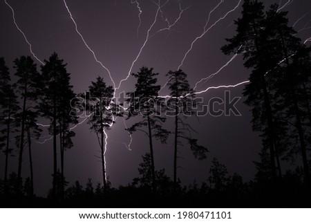 Thunderbolt, lightning bolt in the night sky Foto d'archivio ©