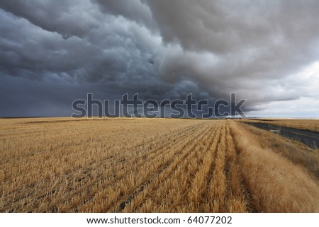 Thunderclouds above fields after harvesting. Montana, the USA