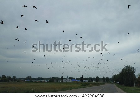 Thunderclouds and many, many ravens.