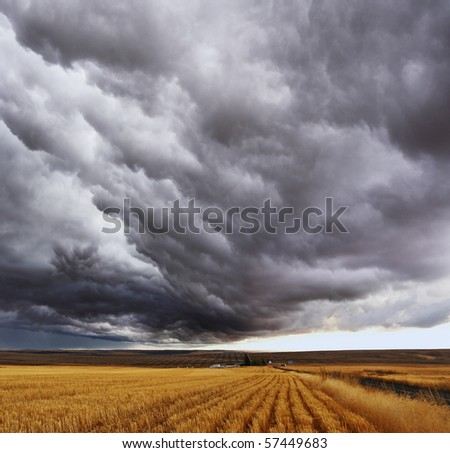 Thunderstorm above fields after harvesting. Montana, the USA
