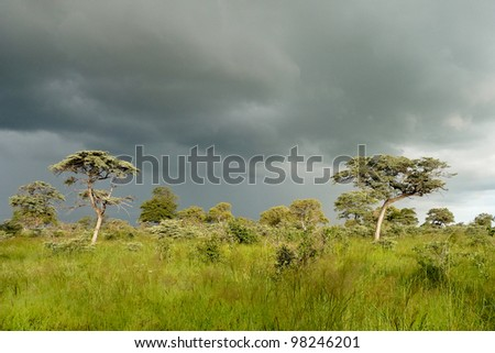Thunderstorm in Southern Africa - stock photo