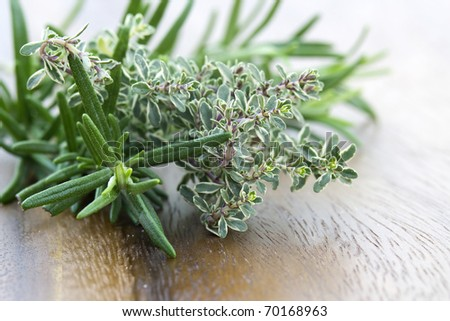 thyme and rosemary - fresh garden herbs
