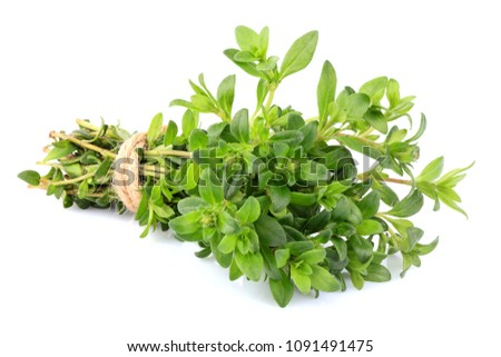 Thyme fresh herb closeup isolated on white background. Stock photo ©