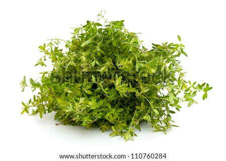 thyme herb - stock photo