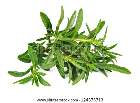 Thyme herb isolated on white background Photo stock ©
