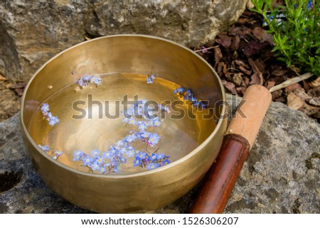 Tibetan bowl with blue wild flowers floating Stok fotoğraf ©