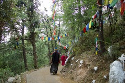 Tibetan monks in the forest on the path