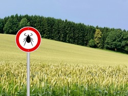 tick insect warning sign in nature