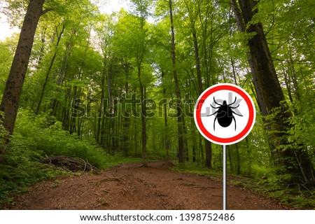 Tick insect warning sign in nature forest. Lyme disease and tick-borne meningitis (meningoencephalitis) transmitter.