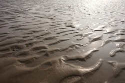 Tidal flat. mud in the tidal flats. Sunlight reflected on the tidal flat.