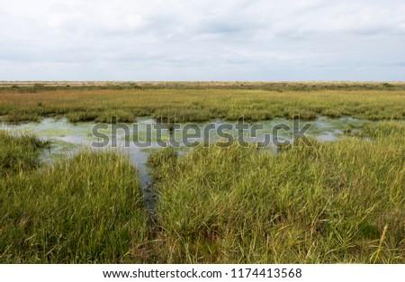 Tidal salt marshes on the North Norfolk coast, UK