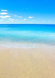 Tide Beach Scene