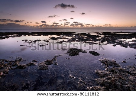 Tide pools at sunrise in Miami's Bear Cut Preserve on Key Biscayne