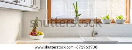 Tidy white kitchen with plants on a window sill
