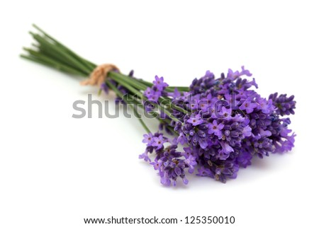 tied lavender flowers