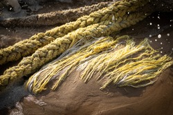 Tied, tangled and twisted old, worn out, weathered ship ropes lying in coast waters of Baltic sea.