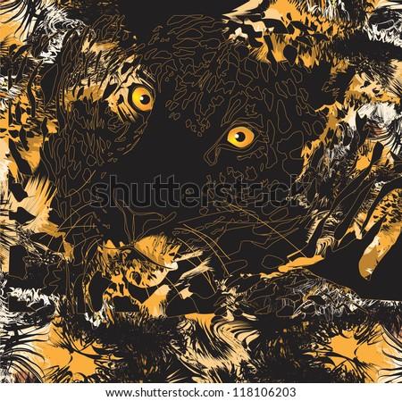 Tiger (animal predator)