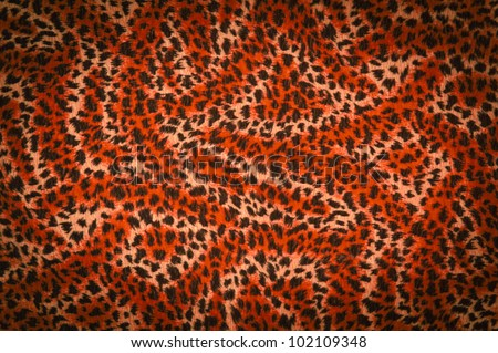 Tiger orange fur texture