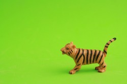 tiger toy in color background