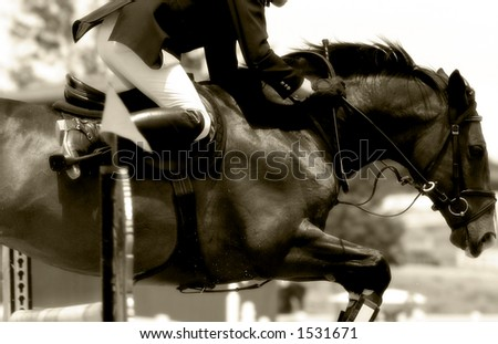 stock photo Tight closeup image of horse rider clearing a jump in