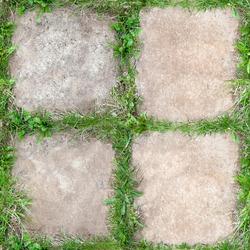 Tile texture with green grass growing in the seams. Square, seamless in the garden. Natural grass frame