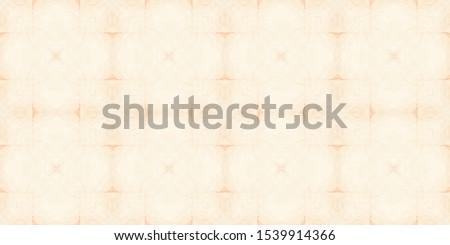 Tiles Portuguese. Sepia Majolica. Sepia Oriental Tile. Patterns Decorative. White Persian Ceramic. White Ethnic Turkish. Azulejos Patterns. Yellow Ethnic Turkish.