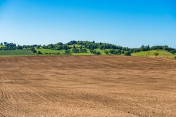 Tilled farm field with green hills, trees and blue sky