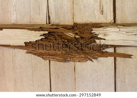 Timber beams within the wooden walls from damage by rot, termites which eat for a long time.
