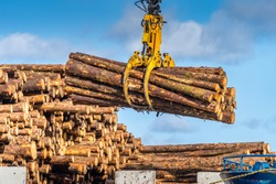 Timber export or import, loading on cargo ship in Wicklow commercial port or harbour in Ireland. Transport industry. Close up on wood logs gripple
