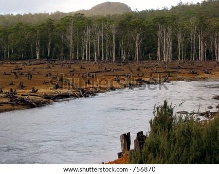 timber logging along a river in Tasmania, Australia.