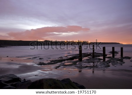 Timber rising from the beach at sunset