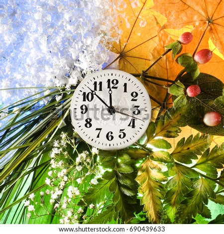 Time and four seasons of the year - Autumn with yellow maple leaves and red berries, summer with green fern leaves and white wildflowers, spring with green grass and winter with artificial snow.