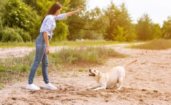 Time With Pet Concept. Portrait of young girl is training her labrador, playing outside, free space