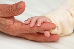 Tiny baby hand holding aged hand of Great Grandma
