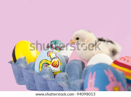 Tiny Easter chick in an egg carton with colorful painted eggs