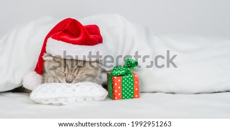 Tiny kitten wearing red santa hat sleeps with gift box under warm white blanlet on a bed at home.Empty space for text.