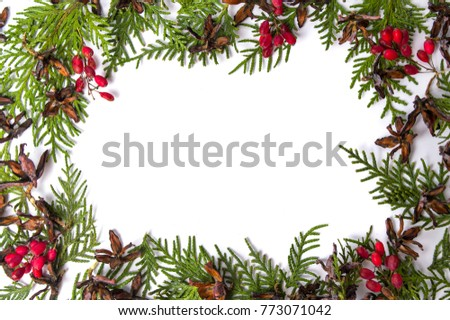 Tiny pine cones with mistletoe and fir branches with copy space #773071042
