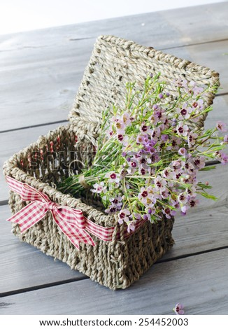 Tiny pink coleonoma flowers, confetti bush. A bunch of flowers in gift basket with red bow