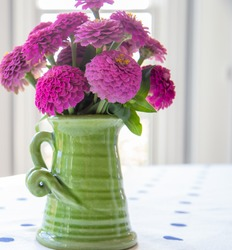 Tiny pink dwarf Lilliput zinnias in a green vase, indoors, on a table with a white tablecloth which has blue dots.