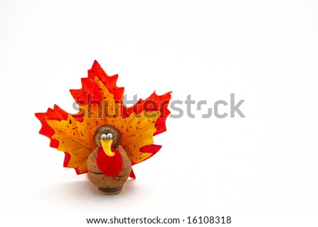 tiny turkey for Thanksgiving