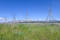 Tipi Poles on the Stoney Indian Reserve at Morley, Alberta, Canada