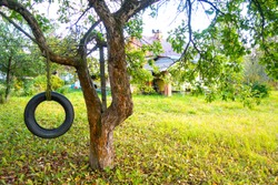 Tire swing hanging from a tree in a summer garden. Concept photo of happy childhood, nostalgia, memory, native home.